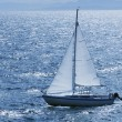 Sailing Boat — Stockfoto #31688433