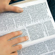 Stock Photo: Reading Bible