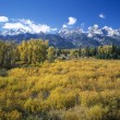Teton Range In Autumn — Stock Photo