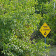 No Swimming Sign In Forest — Stockfoto