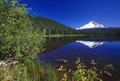 Mount Hood And Reflection In Trillium Lake, Spring. — Stock Photo