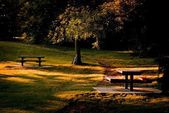 Park And Picnic Benches — Stock Photo