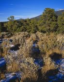 High Desert Landscape In Winter, Sangre De Christo Mountains — Stock Photo