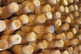 Wooden Posts — Stock Photo