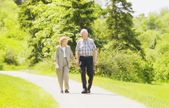 A Senior Couple Taking A Stroll — Stock Photo