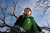 Boy In Tree — Stock Photo