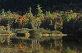 Willey Pond, Crawford Notch White Mountains — Stock Photo