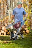 Man With Wheelbarrow — Stock Photo