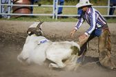 Cowboy Roping Longhorn Steer — Stock Photo