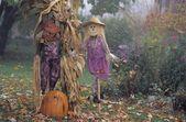 Scarecrow Display — Stock Photo