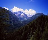 Forested Slopes And Mountain Peaks In The Italian Alps — Stock Photo