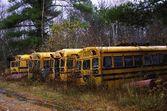 Abandoned School Buses — Stock Photo
