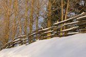 Split Rail Fence In Winter — Stock Photo