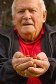 Senior Holding Cherry Tomatoes — Stock Photo