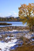 Snow Field In Fall — Stock Photo