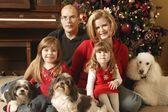 Bir aile noel portresi — Stok fotoğraf