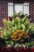Flowering Plants Against A Window Set In A Brick Wall — Stock Photo