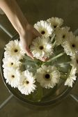 Flowers On Table — Stock Photo