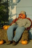 Pumpkin Scarecrow — Stock Photo