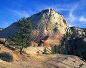 Distinctive Checkerboard Mesa, Zion National Park — Stock Photo