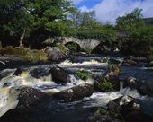 Old Stone Bridge And Rushing Stream, Killarney National Park — Stock Photo
