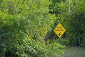 No Swimming Sign In Forest — ストック写真