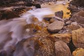 A Close-Up Of A Rushing Stream — Stock Photo