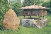 Traditional Stone Granary (Horreo) With Haystack In Asturias — Stock Photo