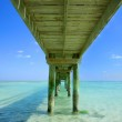 Underneath A Pier — Stock Photo #31690031