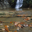 Stock Photo: Waterfall Cascading Into Stream