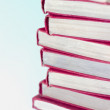 Stack Of Books — Stock Photo #31691253