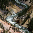 Yellowstone River, Yellowstone National Park — Stock Photo