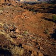 Stock Photo: Barren Landscape Of Waterpocket Fold, Capitol Reef National Park