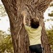 Stock Photo: Child Climbs A Tree