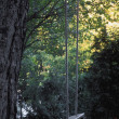 Foto Stock: Private Woodland Swing