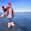 Girl Holds Skates — Stock Photo #31693363