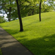 Path In The Park — Stock Photo #31693749