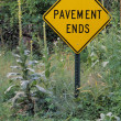 Stock Photo: Overgrown Road Sign