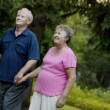 Happy Senior Couple Strolling In The Park — Stock Photo
