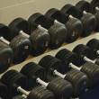 Rows Of Dumbbells — Stock Photo #31694601