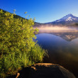 Stock Photo: Sunrise Fog On Trillium Lake, Reflection Of Mount Hood