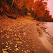Stock Photo: Autumn Shoreline