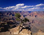 A Scenic Canyon — Stock Photo