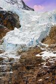 Anioł lodowiec w jasper park narodowy, alberta, canada — Zdjęcie stockowe