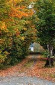 A Beautiful Autumn Road — Stock Photo