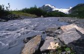 Worthington Glacier Chugach Mountains — ストック写真