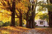 House In Autumn — Stock Photo