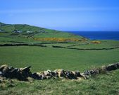 Stone Walls And Pastures Along Galway Bay — Stock Photo