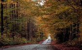 A Scenic Autumn Road — Stock Photo