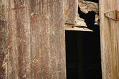 Eski yıpranmış kapı — Stok fotoğraf